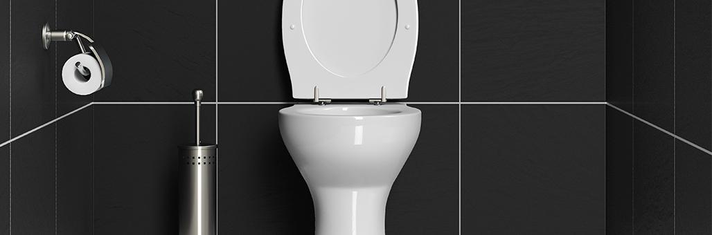 La importancia de tener la tapa del WC abajo para el Feng ...